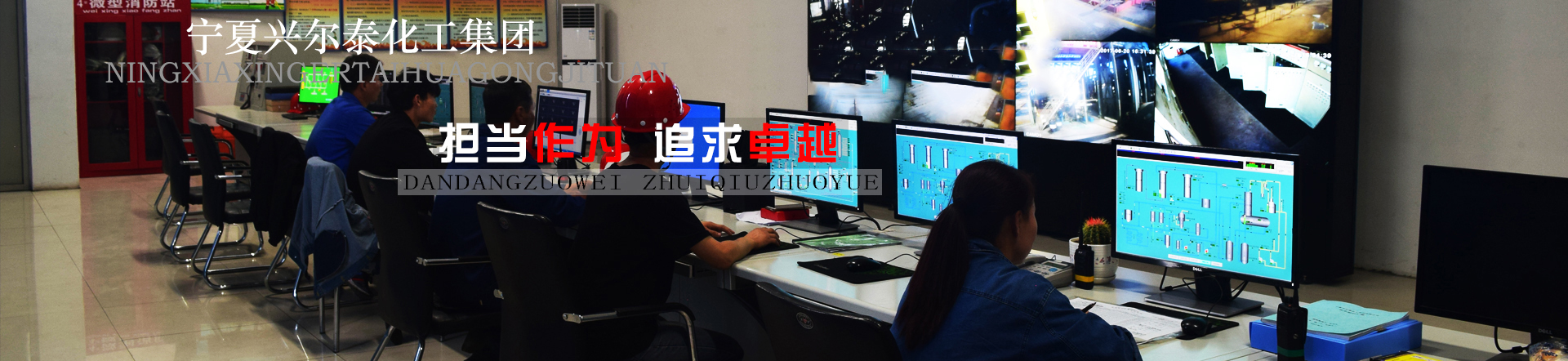 宁夏兴尔泰化工集团